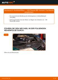 Wie der Wechsel durchführt wird: Kraftstofffilter 1.9 TDI Passat 3B6 tauschen
