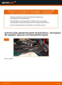 Cómo realizar una sustitución de Amortiguadores en un VW PASSAT