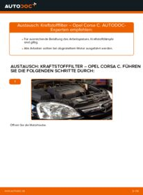 Wie der Wechsel durchführt wird: Kraftstofffilter 1.2 (F08, F68) Opel Corsa C tauschen
