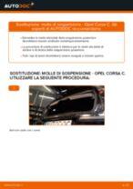 Come cambiare è regolare Molle ammortizzatore OPEL CORSA: pdf tutorial