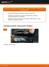 Kaip atlikti keitimą: 2.0 d BMW X3 E83 Amortizatorius