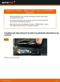 Wie der Wechsel durchführt wird: Federn 2.0 d BMW X3 E83 tauschen