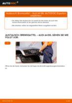 Wie Bremszange hinten links beim AUDI Q2 wechseln - Handbuch online