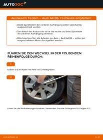 Wie der Wechsel durchführt wird: Federn 1.9 TDI Audi A4 b6 tauschen
