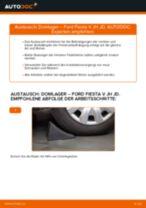 Domlager hinten selber wechseln: Ford Fiesta V JH JD - Austauschanleitung