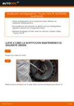 Mantenimiento del Amortiguación: manual gratuito