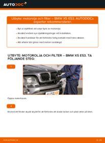 Så byter du Oljefilter på 3.0 d BMW E53