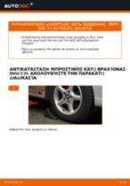 Πώς αλλαγη και ρυθμιζω Ψαλίδια αυτοκινήτου BMW 5 SERIES: οδηγός pdf