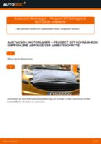 Ratschläge des Automechanikers zum Austausch von PEUGEOT PEUGEOT 207 (WA_, WC_) 1.6 HDi Thermostat