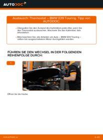 Wie der Wechsel ausgeführt wird: Thermostat beim BMW 5 SERIES