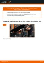 Multiriem vervangen BMW 3 SERIES: werkplaatshandboek