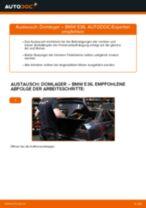 Wie BMW E36 Domlager hinten wechseln - Schritt für Schritt Anleitung
