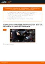 Cómo cambiar: copelas del amortiguador de la parte trasera - BMW E36 | Guía de sustitución