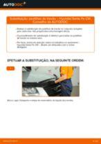 Manual do proprietário HYUNDAI pdf