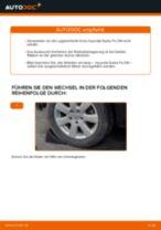 Anleitung: Hyundai Santa Fe CM Radlager hinten wechseln