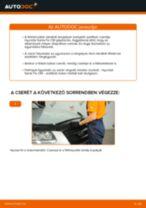 TRW DF6123 mert SANTA FÉ II (CM) | PDF változtatni útmutató