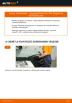 HYUNDAI SANTA FÉ II (CM) Fékdob beszerelése - lépésről-lépésre útmutató