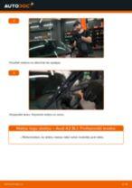 Audi A3 8L1: priekšpusē logu slotiņu – nomaiņas rokasgrāmata