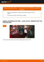 Audi A3 8L1: degvielas filtra – nomaiņas rokasgrāmata