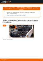 BMW X5 E53: gaisa filtrs – nomaiņas rokasgrāmata