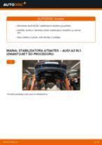 Audi A3 8L1: priekšpusē stabilizatora atsaites – nomaiņas rokasgrāmata