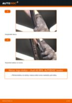 Audi A3 8PA: aizmugurē logu slotiņu – nomaiņas rokasgrāmata