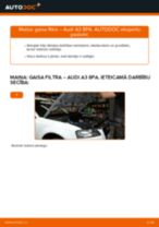 Audi A3 8PA: gaisa filtrs – nomaiņas rokasgrāmata