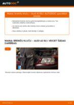 Kā nomainīt: aizmugures bremžu klučus Audi A3 8L1 - nomaiņas ceļvedis