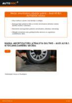 Kā nomainīt: aizmugures amortizatoru atbalsta gultņi Audi A3 8L1 - nomaiņas ceļvedis