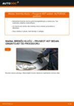 PEUGEOT lietošanas pamācība pdf