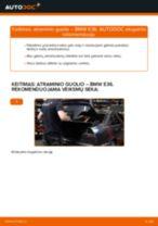 Žingsnis po žingsnio pakeiskite BMW I01 Amortizatoriaus Atraminis Guolis PDF vadovas
