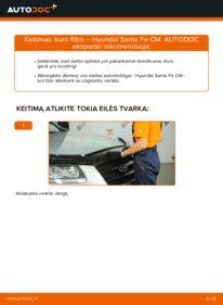 Kaip atlikti keitimą: 2.2 CRDi 4x4 Hyundai Santa Fe cm Kuro filtras