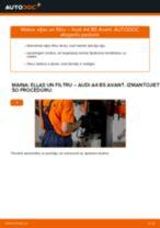 AUDI A4 Eļļas filtrs maiņa: bezmaksas pdf