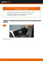 Οι συστάσεις του μηχανικού αυτοκινήτου για την αντικατάσταση AUDI Audi A4 B8 Sedan 1.8 TFSI Μπουζί