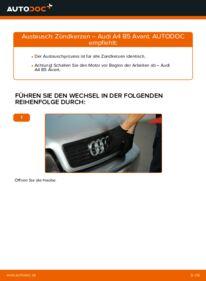 Wie der Wechsel durchführt wird: Zündkerzen 1.9 TDI Audi A4 B5 Avant tauschen