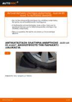 Οι συστάσεις του μηχανικού αυτοκινήτου για την αντικατάσταση AUDI Audi A4 B6 Avant 2.5 TDI quattro Αμορτισέρ