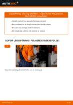 Automekaniker anbefalinger for udskiftning af OPEL Opel Astra g f48 1.6 (F08, F48) Brændstoffilter