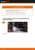 Manual de taller para Opel Astra G CC en línea