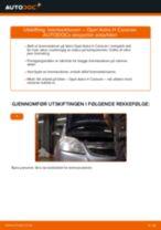 Skifte Glødelampe Nummerskiltlys OPEL ASTRA: gratis pdf