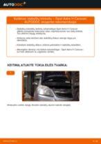 Kaip pakeisti gale ir priekyje Rato stebulė LANCIA FULVIA Berlina - instrukcijos internetinės
