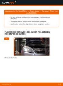 Wie der Wechsel durchführt wird: Kraftstofffilter 1.6 (L35) Opel Astra H Caravan tauschen