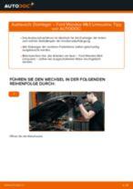 Wie Federbeinstützlager null null austauschen und anpassen: PDF-Anweisung