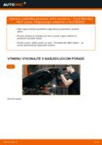 Výmena Tlmič pruzenia FORD MONDEO: dielenská príručka