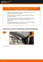 Cambio Filtro aria abitacolo MERCEDES-BENZ da soli - manuale online pdf