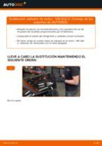 Recomendaciones de mecánicos de automóviles para reemplazar Correa Poly V en un VW Passat 3C 2.0 TDI 16V