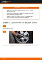 PDF manuale sulla manutenzione C5