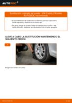 Manual online sobre el cambio de Rodamiento de rueda por su cuenta en VW CADDY III Estate (2KB, 2KJ, 2CB, 2CJ)