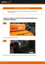 Reemplazar Escobillas VW PASSAT: pdf gratis