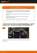 Cambio Plumas limpiaparabrisas delanteras y traseras VW bricolaje - manual pdf en línea
