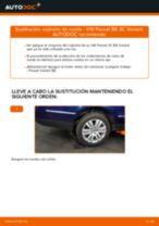Instalación Caja Cojinete Rueda VW PASSAT Variant (3C5) - tutorial paso a paso